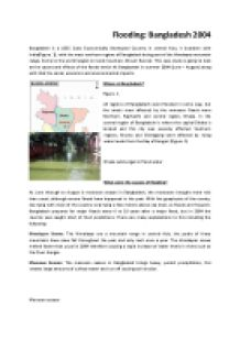flood essay in english