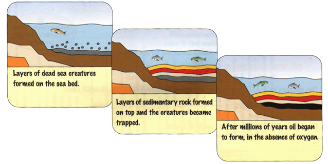 How Crude Oil Is Formed A Level Geography Marked By Teachers