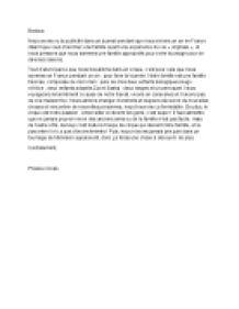French essay publicite