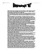Michael jordan essay