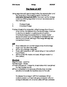 the roles of atp essay How is atp produced and used in living organisms atp (adenosine triphosphate)  overall this is a good solid essay, clearly written and covering the major points.
