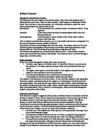 a2 biology coursework kidney