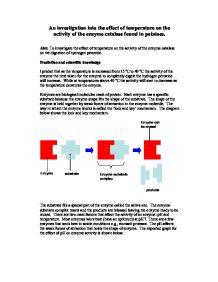 Optimum temp of enzyme catalase?