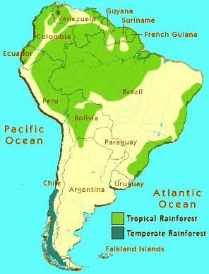Images Of Amazon Rainforest South America Maps on south american rainforest, geographical map of the amazon rainforest, venezuela amazon rainforest, world map amazon rainforest, bolivia amazon rainforest, maps of north america in the amazon rainforest, map of central and south america and rainforest, map of south america amazon river, countries amazon rainforest, current events amazon rainforest, africa amazon rainforest, chile amazon rainforest, map of south america amazon basin, brazil amazon rainforest, map of amazon amazon rain forest and river, peru amazon rainforest,