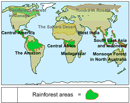 Causes and consequences of deforestation of the amazon rainforest on this map it shows the rainforest around the world and we can see the largest rainforest its the amazonian rainforest we can see all the rainforests gumiabroncs Images