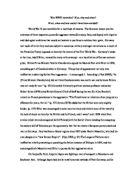 was world war 1 inevitable essay