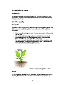 transpiration term papers Water column from the roots through the stem up to the leaves modes of transpiration plants take up large amounts of water from soil which passes into the internal.
