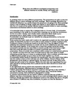 Essay on Sociological Perspectives on Religion
