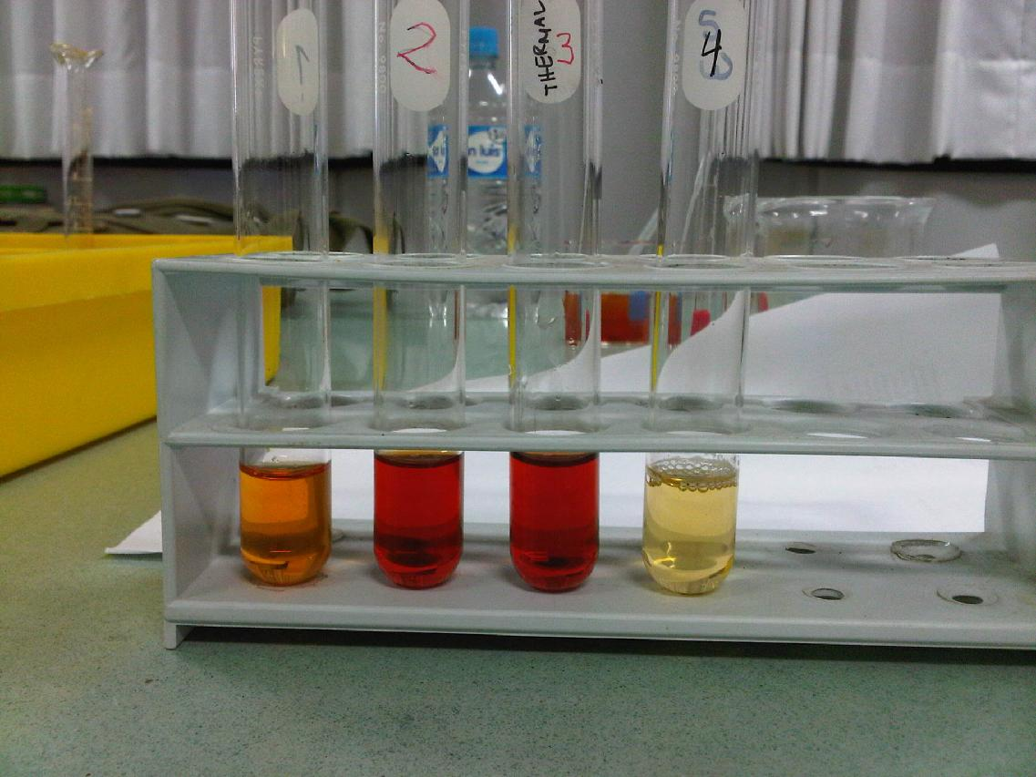 Effect Of Heat Hydrated Copper Ii Sulphate And Subsequent Addition