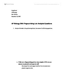 dna fingerprinting lab essay Dna fingerprinting lab report - let the specialists do your homework for you if you need to know how to make a amazing term paper, you need to study this get started.