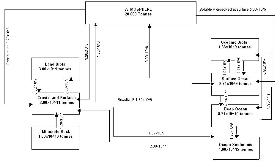 write a detailed essay on biogeochemical cycles