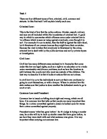 Essay About Law And Crime  Mistyhamel Common Law Essay The Philosopher S Way Presence Of